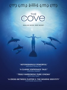 The Cove / Koy